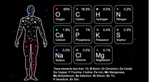 Human Body and Stardust